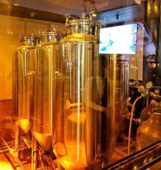 2、精酿啤酒和普通啤酒的区别:酿造熊精酿啤酒和普通啤酒有什么区别?