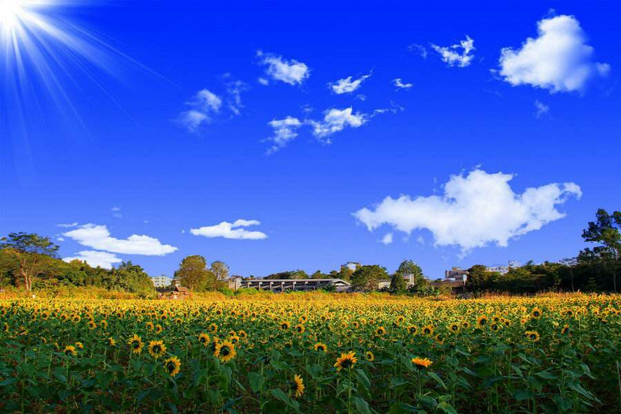 天气晴朗,阳光明媚,用英语怎么说