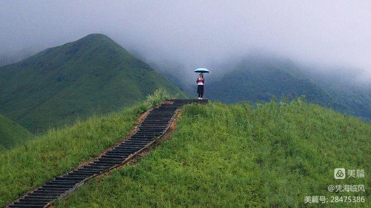 鸳鸯草场的阳光雨雾 - 凭海临风 - 心灵的港湾