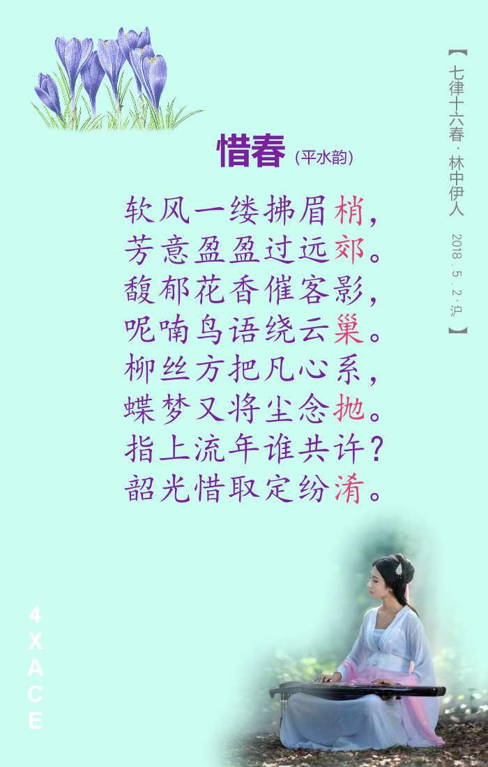 【伊人】七律十六春 - 4xAce脉脉达 - 4xAce脉脉达