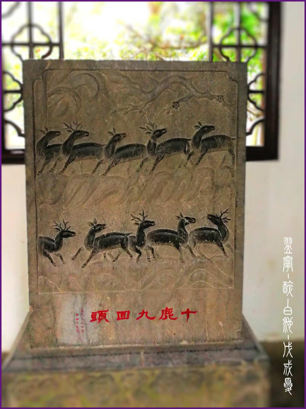 【翌宁】醉白池 · 上海松江 - 4xAce脉脉达 - 4xAce脉脉达