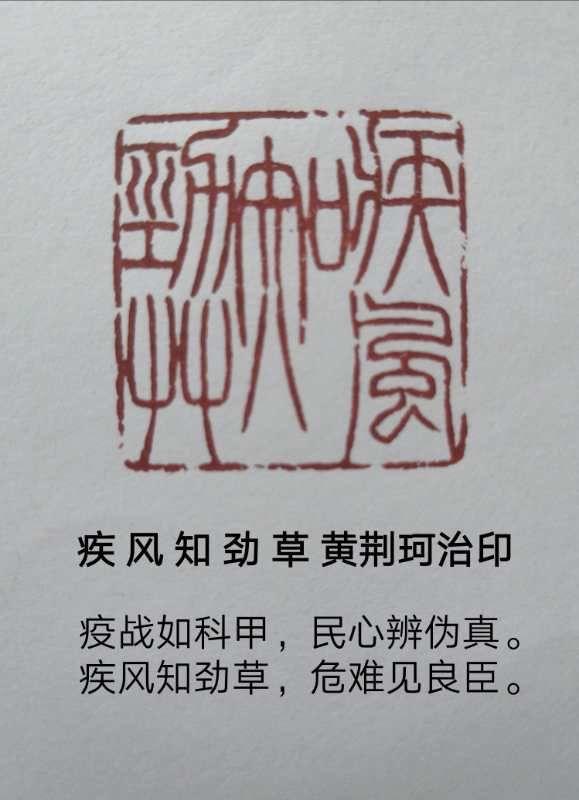 吉林省老年书画研究会(省直)同舟共济 阻击疫情(诗书画印)网络展第十期