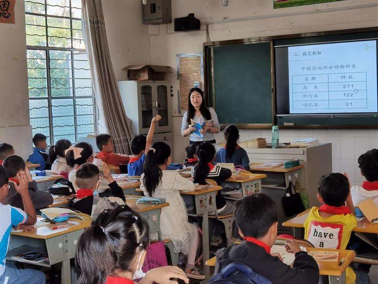 """遇见""""教""""与""""研"""",今儿秋日别样美!——记河西小学教学研讨交流活动"""