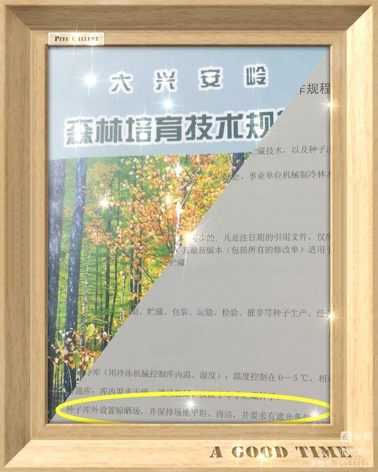 聚沙成金_合众兴园 ——记我站种子园未雨绸缪为秋季采种铺建晾晒场