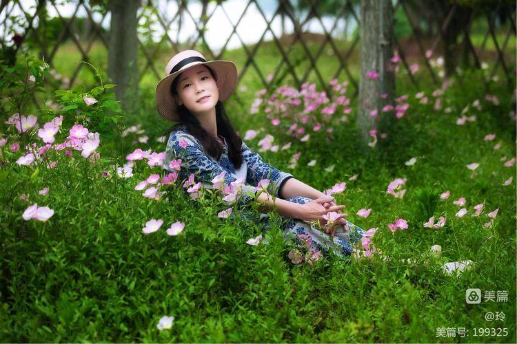 惜春 ・ 花�g�簦��P于惜春是��佛修的介�B(�D2)