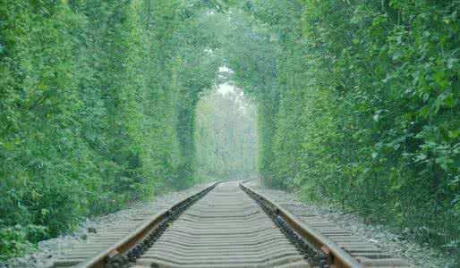 """穿过""""爱情隧道""""从乌克兰到肥东"""
