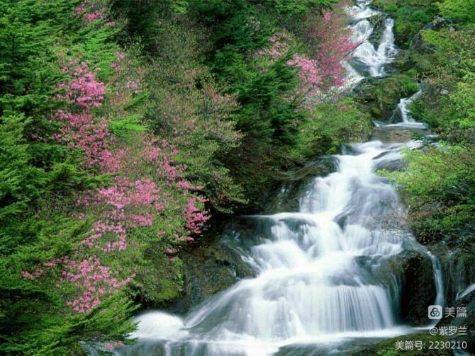 水是生命的源泉,自拍AV视频 水是生命的源泉珍惜水的介绍