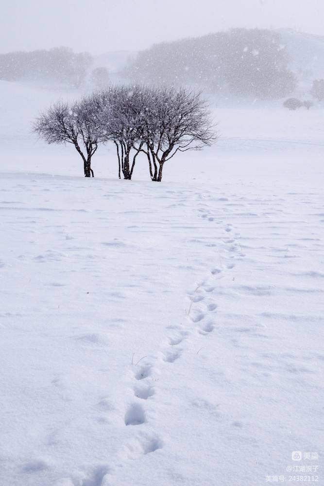 冬天到了(刊发汇编)