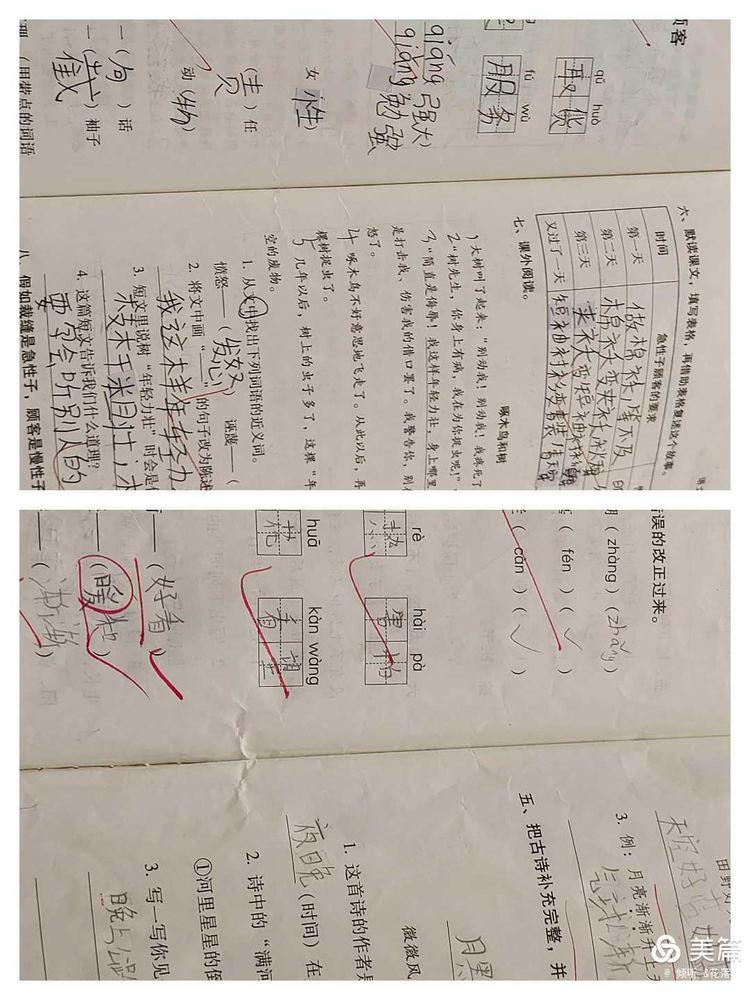 石碧小学第十五周语文教学常规检查