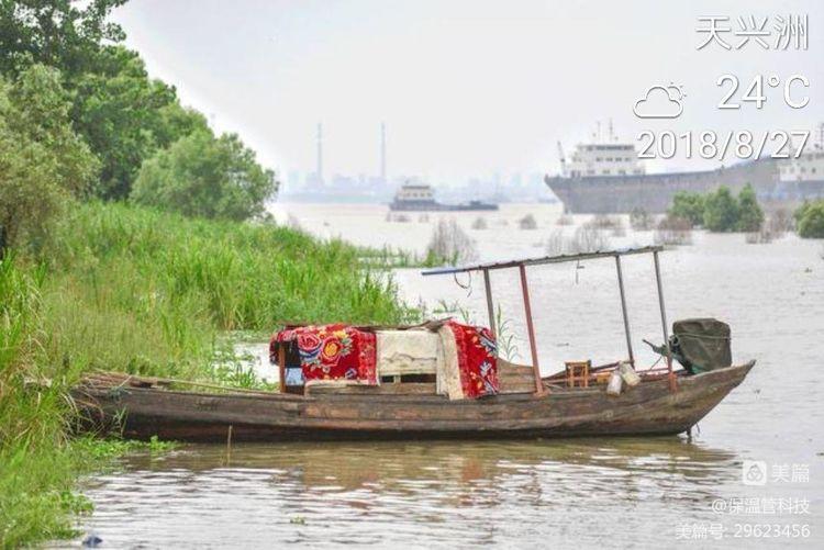 武汉这片八百年都没有被开发的风水宝地,1.5元随便玩!(图3)