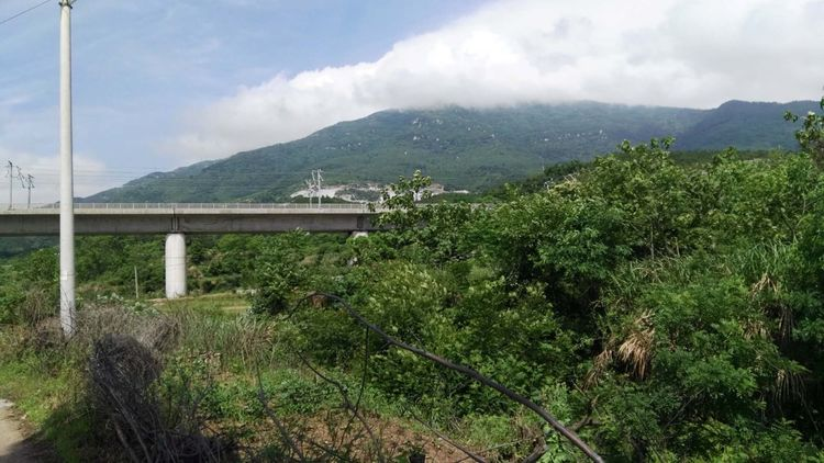大悟山下有��左河村