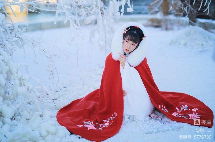 冬之歌,雪之韵,关于雪之韵的意思是什么的介绍