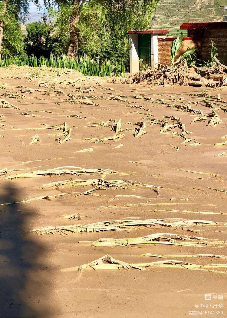 兰州胡家包子赴广河东乡.慰问7.18洪涝灾害受灾群众(图70)